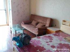 (出租)置城国际精装公寓电视空调热水器洗衣机家具齐全